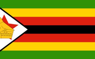 After Mugabe....